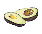 Avocado Color Illustration