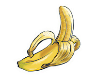 Banana Color Illustration