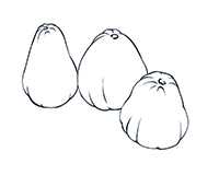 Cashew Black-and-White Illustration