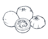 Guava Black-and-White Illustration