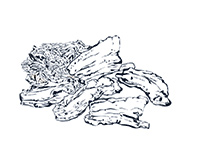 Pork Black-and-White Illustration