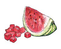 Watermelon Color Illustration