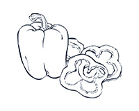 Bell Pepper Black-and-White Illustration