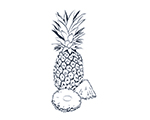Pineapple Black-and-White Illustration
