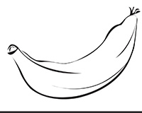 Plantain Black-and-White Illustration